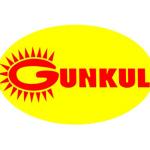 GUNKUL ลงทุนโซลาร์ฟาร์มในญี่ปุ่น มูลค่า 3.6 พันล.