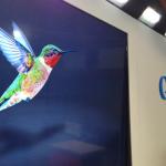"""SEO : กับการเปลี่ยนแปลงครั้งใหม่ใน """"Hummingbird algorithm"""""""