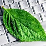News : Fujitsu ขยายธุรกิจสู่การเกษตร ทำโรงงานปลูกผักใบเขียวที่ใช้เทคโนโลยีเข้าช่วย