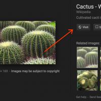 "Google นำปุ่ม ""ดูรูปภาพ"" ออกจาก Image Search เพื่อลดการขโมยผลงานภาพที่มีลิขสิทธิ์"