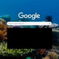Recommend : ปรับแต่งหน้าแรก Google Chrome ให้งดงามสบายตา